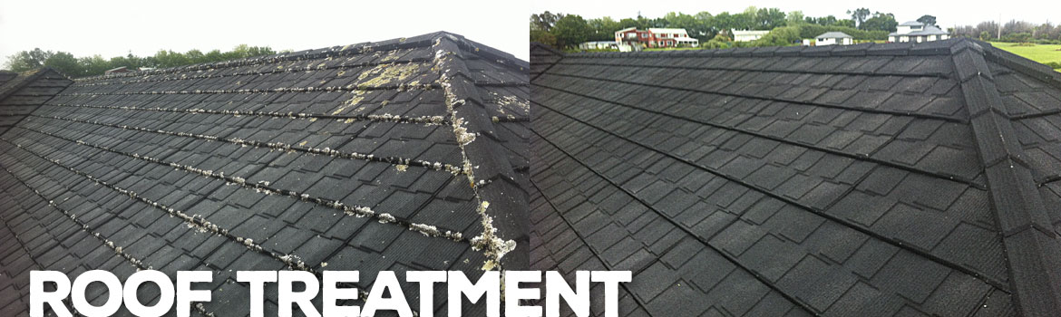 RoofTreatment
