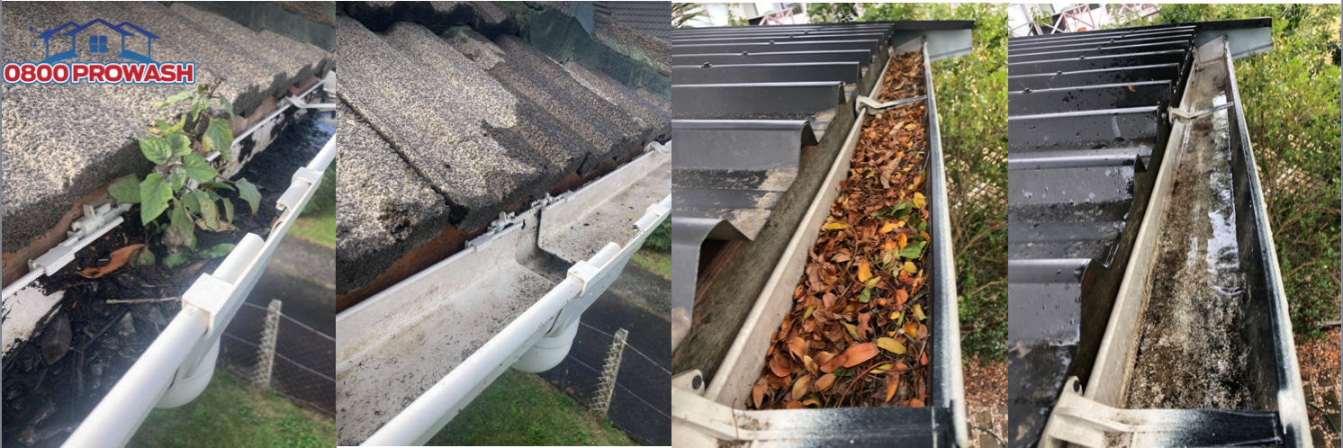 Gutter cleaning time